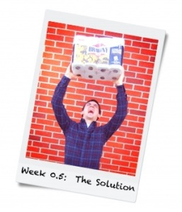 Week 0.5: The Solution