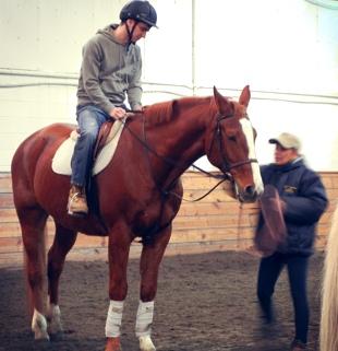 instructiononhorse