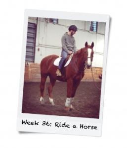 Week 36: Ride a Horse